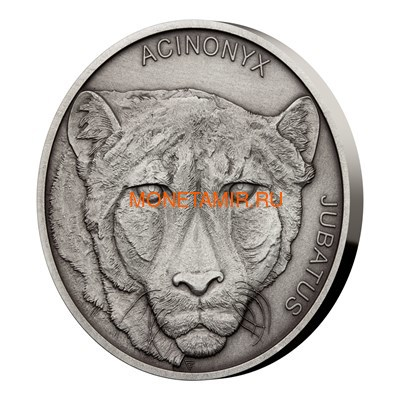 Ниуэ 1 доллар 2019 Гепард Животные Чемпионы (Niue 1$ 2019 Cheetah Animal Champions 1 oz Silver Coin) Буклет.Арт.67 (фото, вид 1)