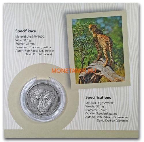 Ниуэ 1 доллар 2019 Гепард Животные Чемпионы (Niue 1$ 2019 Cheetah Animal Champions 1 oz Silver Coin) Буклет.Арт.67 (фото, вид 5)