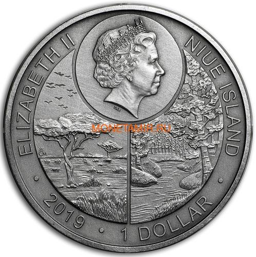 Ниуэ 1 доллар 2019 Лягушка Животные Чемпионы (Niue 1$ 2019 Frog Animal Champions 1 oz Silver Coin) Буклет.Арт.67 (фото, вид 2)