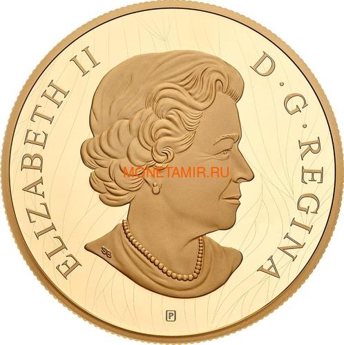 Канада 100 долларов 2019 Лев Художник Роберт Бейтман (Canada 100$ 2019 Robert Bateman Into The Light Lion 10 oz Silver Coin Gold Plating).Арт.65 (фото, вид 2)