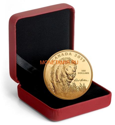 Канада 100 долларов 2019 Лев Художник Роберт Бейтман (Canada 100$ 2019 Robert Bateman Into The Light Lion 10 oz Silver Coin Gold Plating).Арт.65 (фото, вид 3)