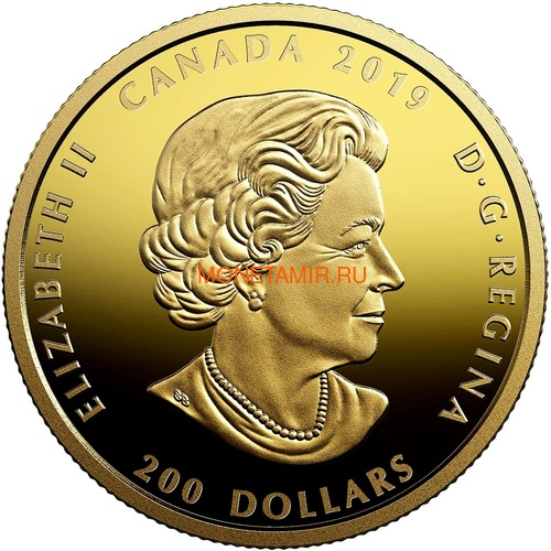 Канада 200 долларов 2019 Мадагаскарский Рубин Свет и Процветание (Canada 200$ 2019 Ruby Celebrating Canada's Diversity Light and Prosperity 1 oz Gold Coin).Арт.65 (фото, вид 2)