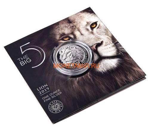 Южная Африка 5 рандов 2019 Лев Большая Африканская Пятерка (South Africa 5R 2019 Lion Big Five 1oz Silver Coin) Блистер.Арт.65 (фото, вид 2)