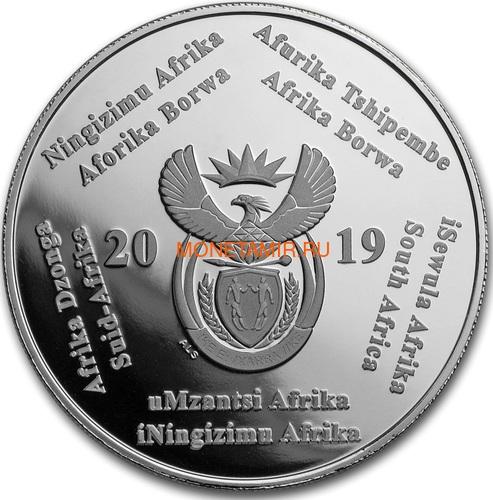 Южная Африка 2 ранда + 2,5 цента 2019 Аполлон 11 и Рейнджер Космос Набор 2 Монеты (2019 South Africa R2 and 2,5c Inventions Polymer Putty Moon Landing Silver Proof Set).Арт.75 (фото, вид 3)