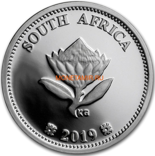 Южная Африка 2 ранда + 2,5 цента 2019 Аполлон 11 и Рейнджер Космос Набор 2 Монеты (2019 South Africa R2 and 2,5c Inventions Polymer Putty Moon Landing Silver Proof Set).Арт.75 (фото, вид 4)