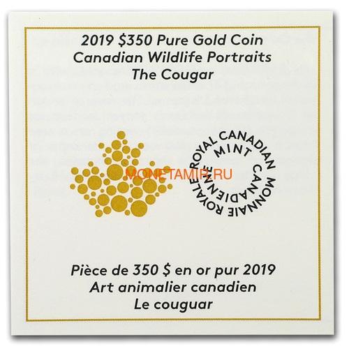 Канада 350 долларов 2019 Пума Портреты Дикой Природы (Canada 350$ 2019 Cougar Wildlife Portraits 35 gr Gold Proof Coin).Арт.1295EK1.432600E/75 (фото, вид 3)