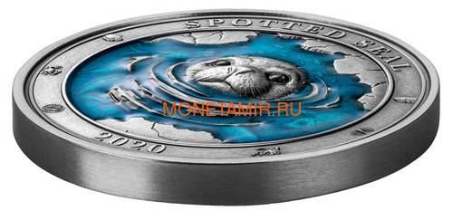 Барбадос 5 долларов 2020 Пятнистый Тюлень Подводный Мир (Barbados 5$ 2020 Spotted Seal Underwater World 3oz Silver).Арт.65 (фото, вид 1)