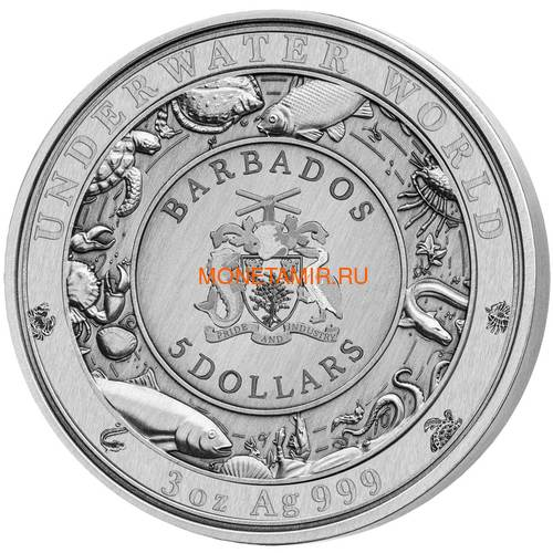 Барбадос 5 долларов 2020 Пятнистый Тюлень Подводный Мир (Barbados 5$ 2020 Spotted Seal Underwater World 3oz Silver).Арт.65 (фото, вид 2)