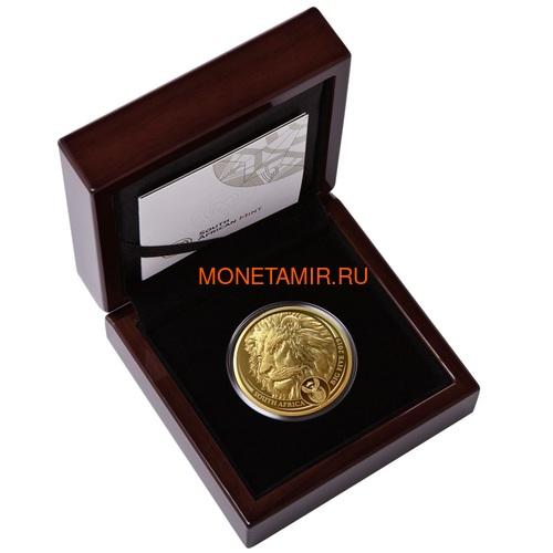 Южная Африка 50 рандов 2019 Лев Большая Африканская Пятерка (South Africa 50 Rand 2019 Lion Big Five 1 oz Gold Coin).Арт.65 (фото, вид 2)