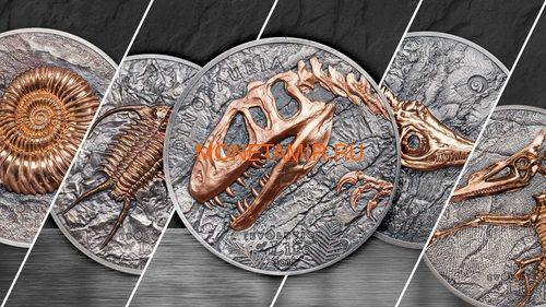 Монголия 500 тугриков 2019 Синраптор Эволюция (Mongolia 500T 2019 Evolution of Life Sinraptor 1oz Silver Coin).Арт.65 (фото, вид 4)