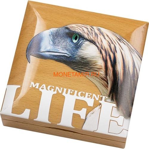 Острова Кука 5 долларов 2019 Филиппинский Орел серия Великолепная Жизнь (Cook Isl 5$ 2019 Magnificent Life Philippine Eagle 1oz Silver Coin).Арт.65 (фото, вид 3)