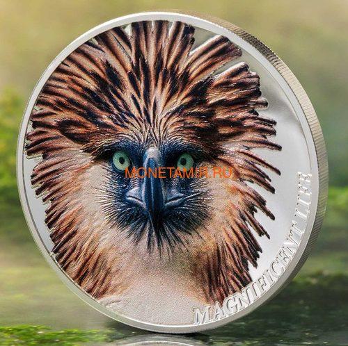 Острова Кука 5 долларов 2019 Филиппинский Орел серия Великолепная Жизнь (Cook Isl 5$ 2019 Magnificent Life Philippine Eagle 1oz Silver Coin).Арт.65 (фото, вид 1)