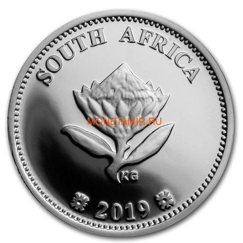 Южная Африка 2 ранда + 2,5 цента 2019 Аполлон 11 и Рейнджер Космос Набор 2 Монеты (2019 South Africa R2 and 2,5c Inventions Polymer Putty Moon Landing Silver Proof Set).Арт.000555857599/75 (фото, вид 5)