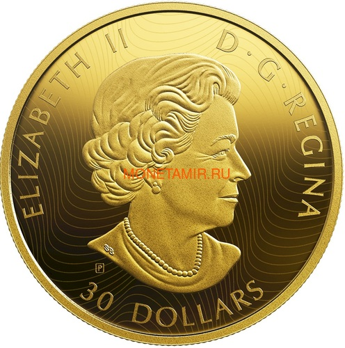 Канада 30 долларов 2019 Волки и Лоси Хищник и Добыча (Canada 30$ 2019 Predator and Prey Wolves and Elk 2 oz Gold Plated Silver Coin).Арт.65 (фото, вид 1)
