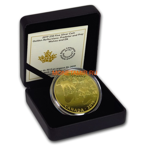 Канада 30 долларов 2019 Волки и Лоси Хищник и Добыча (Canada 30$ 2019 Predator and Prey Wolves and Elk 2 oz Gold Plated Silver Coin).Арт.65 (фото, вид 2)