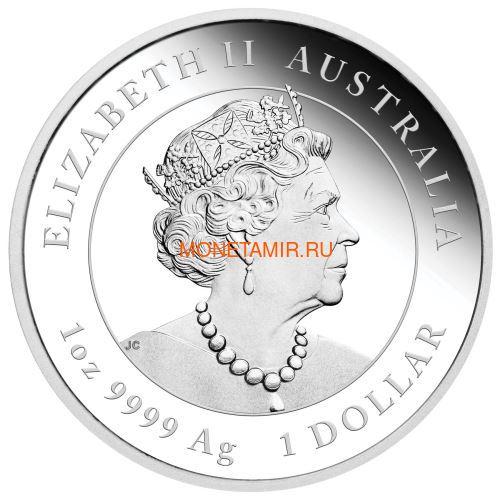 Австралия 1 доллар 2020 Год Крысы Лунный Календарь (Australia 1$ 2020 Year of the Rat Lunar Proof).Арт.000360957536/65 (фото, вид 1)