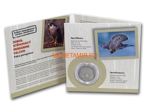 Ниуэ 1 доллар 2019 Сокол Сапсан Животные Чемпионы (Niue 1$ 2019 Peregrine Falcon Animal Champions 1 oz Silver Coin) Буклет.Арт.67 (фото, вид 3)
