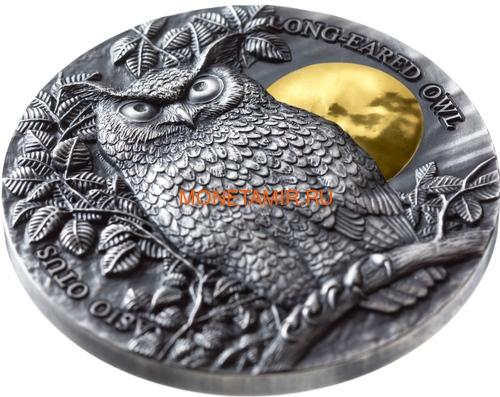 Ниуэ 5 долларов 2019 Ушастая Сова (Niue 5$ 2019 Long Eared Owl Asio Otus 2 oz Silver Coin).Арт.65 (фото, вид 1)