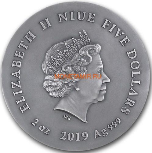 Ниуэ 5 долларов 2019 Ушастая Сова (Niue 5$ 2019 Long Eared Owl Asio Otus 2 oz Silver Coin).Арт.65 (фото, вид 3)