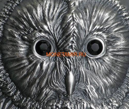 Монголия 1000 тугриков 2019 Уральская Сова Фигурка (Mongolia 1000T 2019 Ural Owl 3D 2 oz Silver Coin).Арт.65 (фото, вид 2)