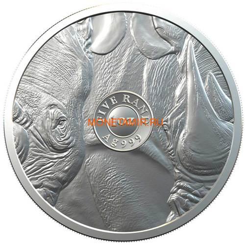 Южная Африка 5 рандов 2020 Носорог Большая Африканская Пятерка (South Africa 5R 2020 Rhino Big Five 1 oz Silver Coin) Блистер.Арт.65 (фото, вид 1)