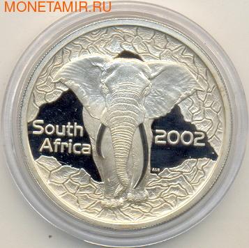Слоны. Южная Африка 20 с 2002. (фото, вид 1)