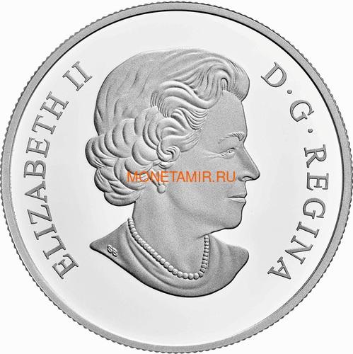 Канада 20 долларов 2020 Божья Коровка серия Насекомые из Драгоценных Камней (Canada 20$ 2020 Ladybug Bejeweled Bugs Silver Coin).Арт.Е85 (фото, вид 3)