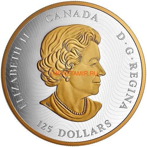 Канада 125 долларов 2020 Счастливый Дракон (Canada 125$ 2020 Lucky Dragon 0,5 Kilogram Silver Coin).Арт.88 (фото, вид 2)