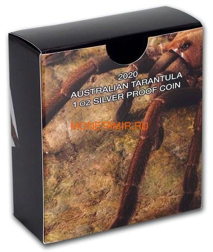 Тувалу 1 доллар 2020 Тарантул Паук серия Смертельно Опасные (Tuvalu 1$ 2020 Deadly and Dangerous Tarantula 1oz Silver Coin).Арт.92 (фото, вид 5)