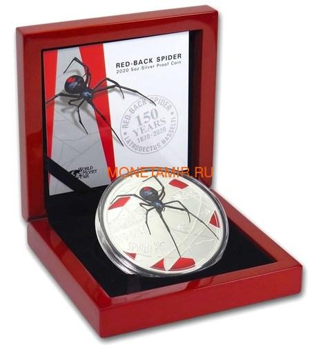 Ниуэ 10 долларов 2020 Красноспинный Паук Всемирная Денежная Ярмарка (Niue 2020 $10 Deadly & Dangerous Red-Back Spider 5oz Silver Proof Coin World Money Fair).Арт.88 (фото, вид 3)