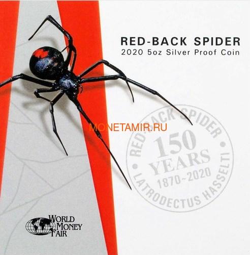 Ниуэ 10 долларов 2020 Красноспинный Паук Всемирная Денежная Ярмарка (Niue 2020 $10 Deadly & Dangerous Red-Back Spider 5oz Silver Proof Coin World Money Fair).Арт.88 (фото, вид 5)