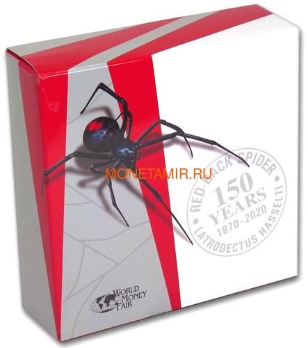 Ниуэ 10 долларов 2020 Красноспинный Паук Всемирная Денежная Ярмарка (Niue 2020 $10 Deadly & Dangerous Red-Back Spider 5oz Silver Proof Coin World Money Fair).Арт.88 (фото, вид 4)