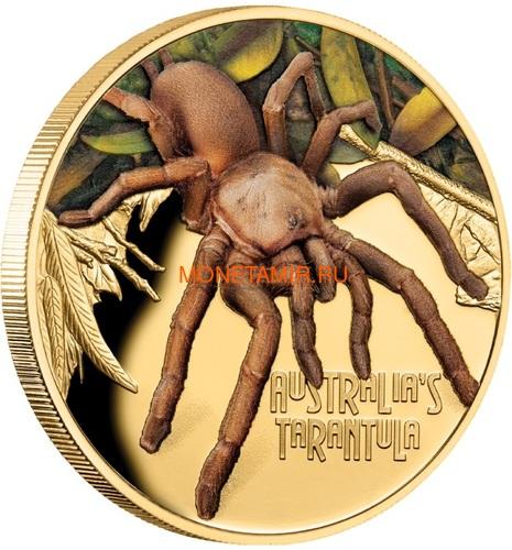 Ниуэ 100 долларов 2020 Тарантул Паук серия Смертельно Опасные (Niue 2020 $100 Tarantula Deadly and Dangerous 1oz Gold Proof Coin)Арт.88 (фото, вид 1)