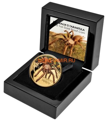 Ниуэ 100 долларов 2020 Тарантул Паук серия Смертельно Опасные (Niue 2020 $100 Tarantula Deadly and Dangerous 1oz Gold Proof Coin)Арт.88 (фото, вид 3)