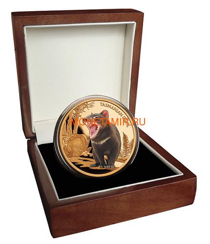 Ниуэ 100 долларов 2013 Тасманийский Дьявол Исчезающие Виды (Niue $100 2013 Tasmanian Devil Endangered 1oz Gold Proof Coin).Арт.4000Е/88 (фото, вид 2)