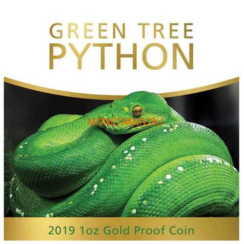Ниуэ 100 долларов 2019 Зеленый Питон Замечательные Рептилии (Niue 100$ 2019 Remarkable Reptile Green Tree Python 1Oz Gold Proof).Арт.63 (фото, вид 5)