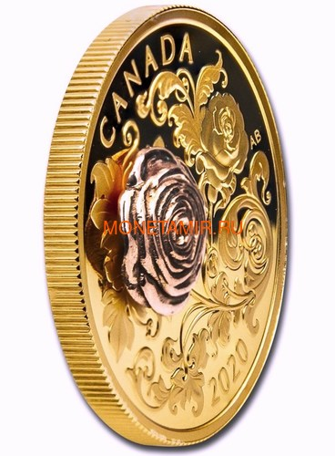 Канада 200 долларов 2020 Роза Королева Елизавета (Canada 200$ 2020 The Queen Elizabeth Rose 1 oz Gold Coin).Арт.85 (фото, вид 1)