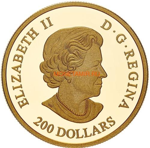 Канада 200 долларов 2020 Роза Королева Елизавета (Canada 200$ 2020 The Queen Elizabeth Rose 1 oz Gold Coin).Арт.85 (фото, вид 2)