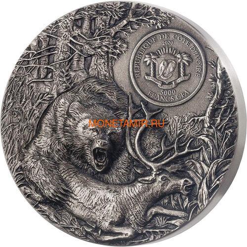 Берег Слоновой Кости Кот-д'Ивуар 5000 франков 2020 Гризли Медведь Хищники (Ivory Coast 5000FCFA 2020 Grizzly Predators 3oz Antique Finish Silver Coin).Арт.92 (фото, вид 2)