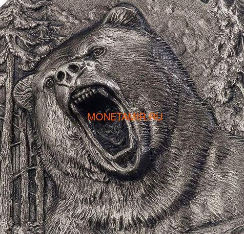 Берег Слоновой Кости Кот-д'Ивуар 5000 франков 2020 Гризли Медведь Хищники (Ivory Coast 5000FCFA 2020 Grizzly Predators 3oz Antique Finish Silver Coin).Арт.92 (фото, вид 1)