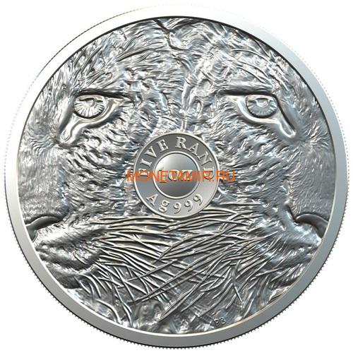 Южная Африка 5 рандов 2020 Леопард Большая Африканская Пятерка (South Africa 5R 2020 Leopard Big Five 1oz Silver Coin) Блистер.Арт.92 (фото, вид 1)