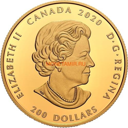 Канада 200 долларов 2020 Бриллиант Черная Метка Круг ( Canada 200$ 2020 Forevermark Black Label Round Diamond 1oz Gold Coin ).Арт.92 (фото, вид 2)