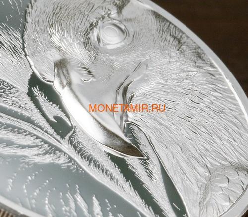 Монголия 500 тугриков 2020 Величественный Орел ( Mogolia 500T 2020 Majestic Eagle 1oz Silver Coin ).Арт.92 (фото, вид 1)