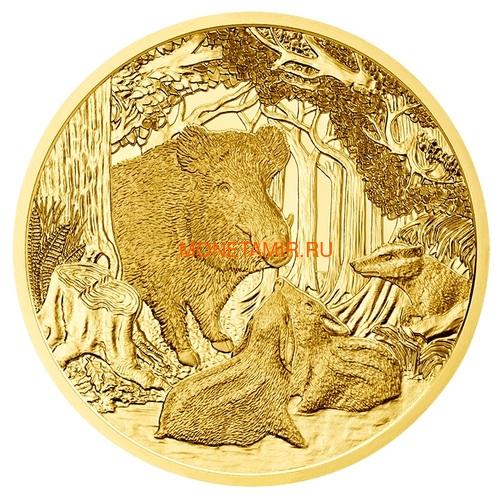 Австрия 100 евро 2013-2018 Дикая Природа Красный Олень Кабан Глухарь Лиса Горный Козел Утка Набор 6 монет (Austria 100E Wildlife in our Sights Gold Coin Set).Арт.92 (фото, вид 6)