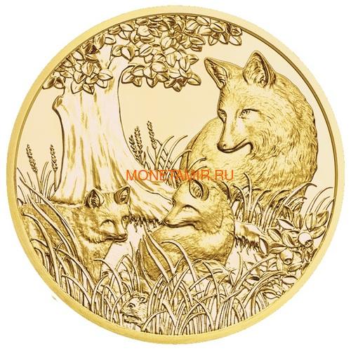 Австрия 100 евро 2013-2018 Дикая Природа Красный Олень Кабан Глухарь Лиса Горный Козел Утка Набор 6 монет (Austria 100E Wildlife in our Sights Gold Coin Set).Арт.92 (фото, вид 10)