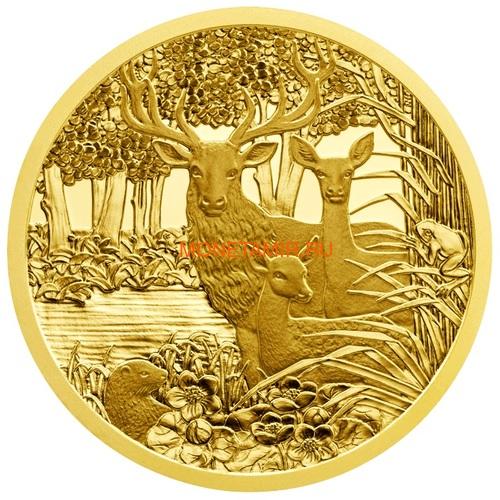 Австрия 100 евро 2013-2018 Дикая Природа Красный Олень Кабан Глухарь Лиса Горный Козел Утка Набор 6 монет (Austria 100E Wildlife in our Sights Gold Coin Set).Арт.92 (фото, вид 4)