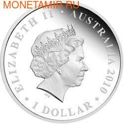 """Австралия 1 долларов 2010. """"Празднование Австралии"""" """"Квинсленд"""" """"Черепаха"""" (фото, вид 1)"""
