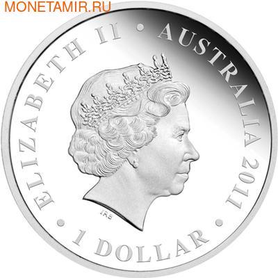 """Австралия 1 доллар 2011. """"Празднование Австралии"""" """"Сидней"""" """"Лягушка"""" (фото, вид 1)"""