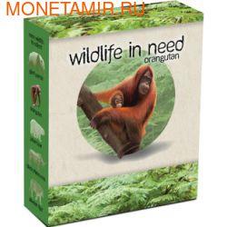 Тувалу 1 доллар 2011.Орангутанг серия Дикая природа в опасности.Арт.60 (фото, вид 3)