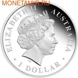 Австралия 1 доллар 2012. Кенгуру (фото, вид 1)
